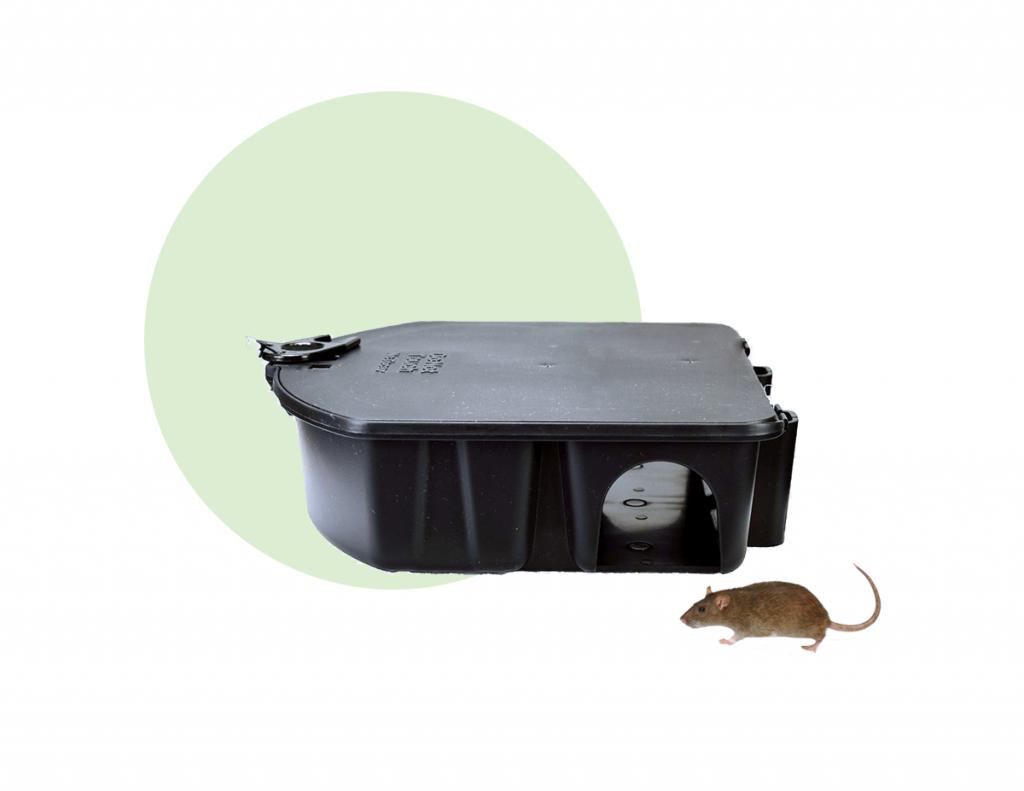 Estaciones cebaderas para ratones
